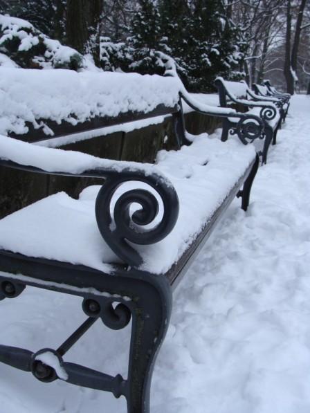 Schneeweisse Parbaenke