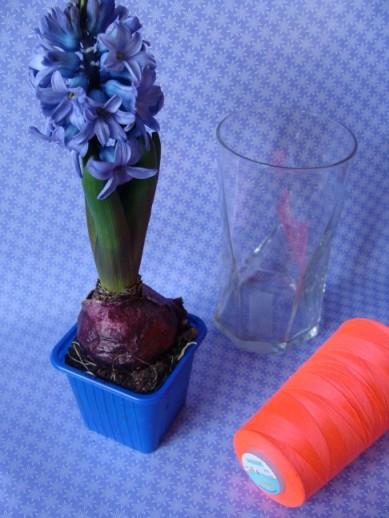 Hyazinthe, Glas, Neonband
